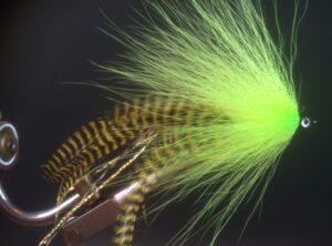 801 Bucktail ( polder)  10 cm tot 25 cm